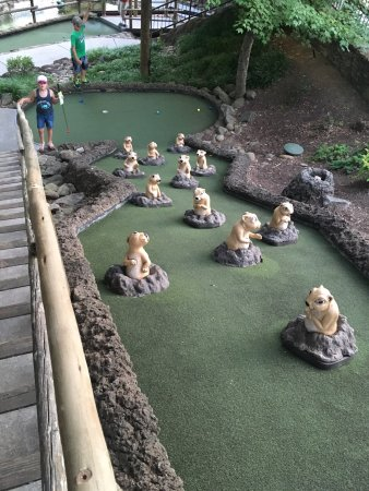 Ripley's Davy Crockett Mini Golf: photo1.jpg