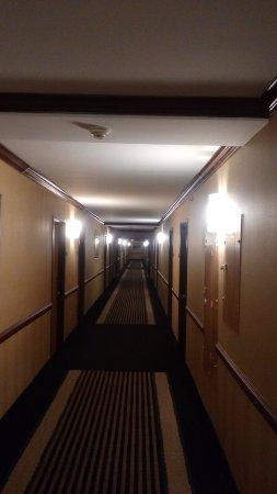 Wyndham Garden Hotel Newark Airport: Hallway!