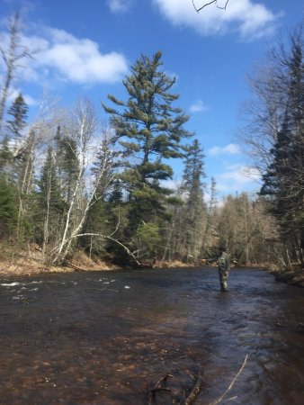 Fly fishing in the Brule state forest