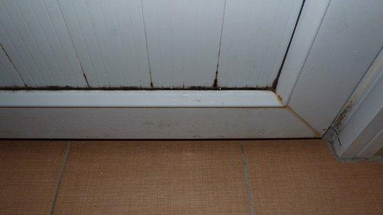 Bariscan Hotel Alanya : Дверь санузла грязная.
