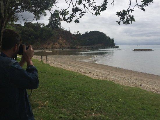 Isla Waiheke, Nueva Zelanda: Coast from the winery