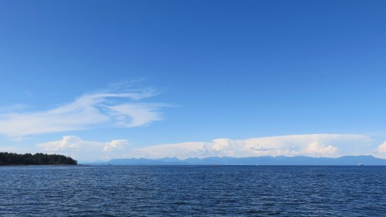What you will see while sailing around Nanaimo...