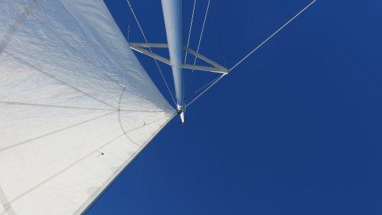 "Nanaimo, Kanada: The view while lying on the ""nets""..."