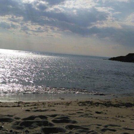 Tirebolu Belediye Plaji