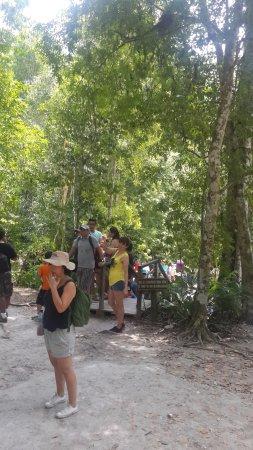 People At Tikal Picture Of Tikal National Park Peten Department Tripadvisor