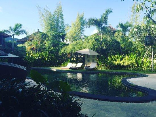 Villa Diana Bali: Vu depuis notre chambre