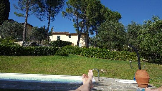 Villa Sestini: IMG-20160622-WA0011_large.jpg