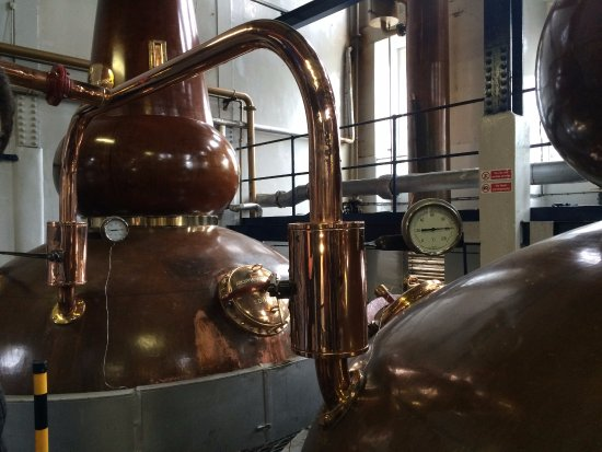 The Hairy Coo - Free Scottish Highlands Tour : Deanston Whisky tour