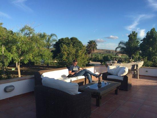 Villa delle Palme Delfina: photo0.jpg
