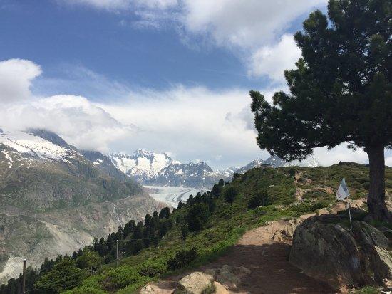 Riederalp, Suisse : Bilder fra vår tur hit