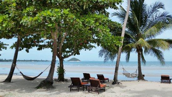 Viva Vacation Resort: 20160627_103658_large.jpg