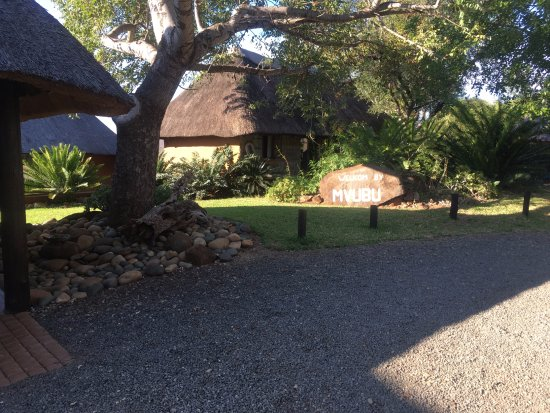 Pongola, Afrique du Sud : Reception