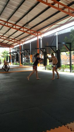 Tiger Muay Thai - Day Classes: 20160622_143007_large.jpg