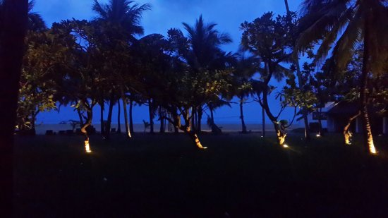 Jetwing Blue: the view from our room window at night - lawn, palms and the beach strip
