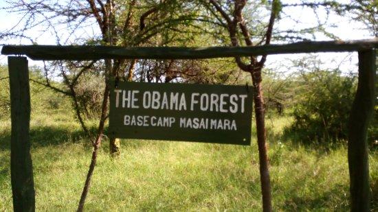 Mara Explorer Camp Picture