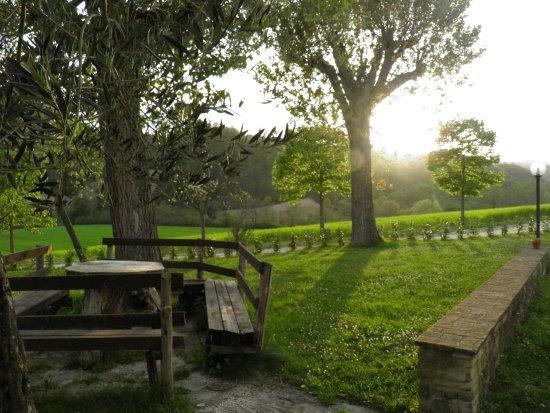Agriturismo Pian d'Isola: Giardino