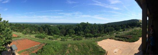 Thomas Jefferson's Monticello: photo2.jpg