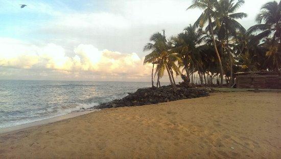 Amagi Beach Hotel Picture Of Amagi Beach Marawila Tripadvisor