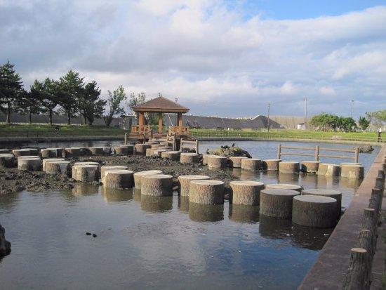 Strait Isaribi Park