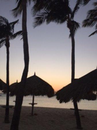 Divi Aruba Phoenix Beach Resort Photo