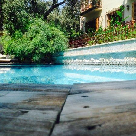 Jade Residence: photo1.jpg