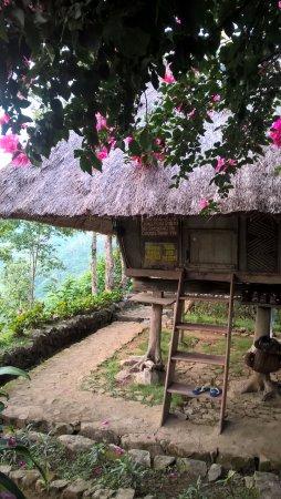 Native Village Inn & Restaurant: Hutte et son échelle