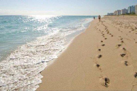 The St. Regis Bal Harbour Resort: THE beach