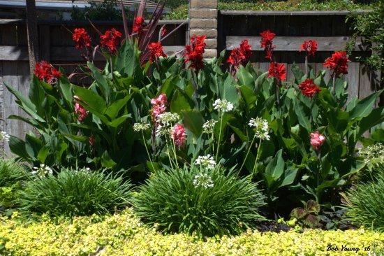 El Pueblo Inn: Flowers