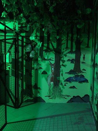 Telok Blangah House Escape Room