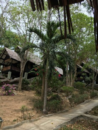 Thongtapan Resort: IMG-20160515-WA0005_large.jpg