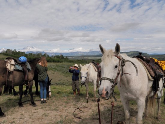 Moose Head Ranch: Trail riding in view of the Tetons