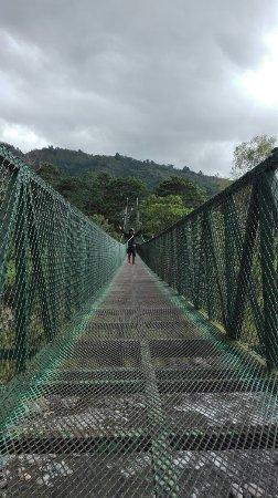 Orosi River Valley  ( El Valle del Rio Orosi ): Puente colgante