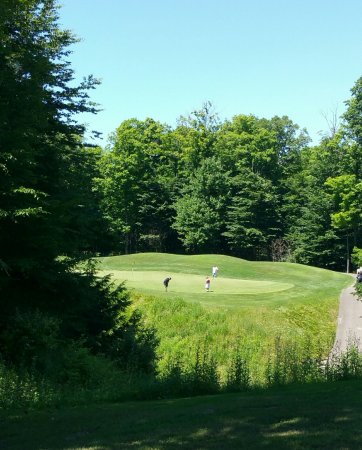Saugatuck, MI: A glimpse of the next hole where our guys are.