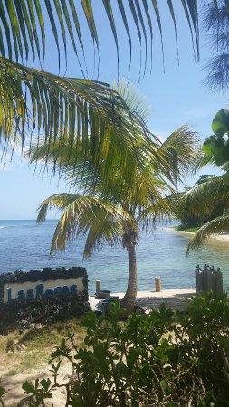 Las Rocas Resort & Dive Center: 20160624_101115_large.jpg