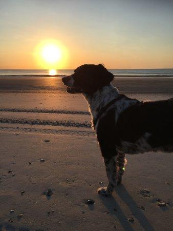 Omni Amelia Island Plantation Resort: Beautiful sunrise view every morning