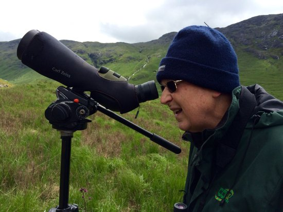 "Pennyghael, UK: Buzzards and Eagle spotting with Bryan of ""Wild about Mull"""