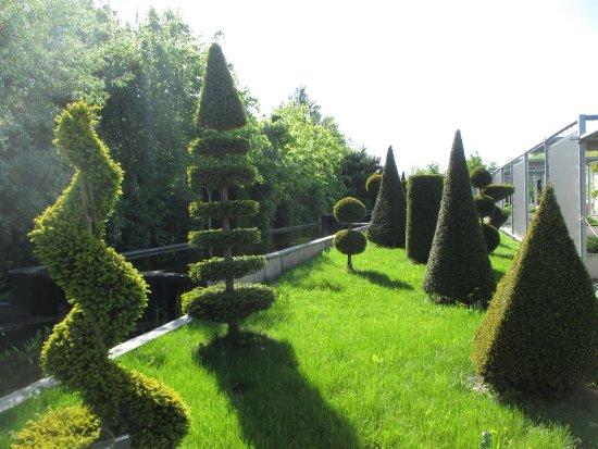 Jardin fran ais picture of terra botanica angers for Jardin francais