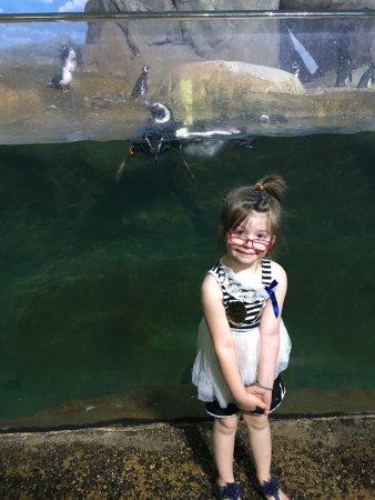 John Ball Zoo: photo0.jpg