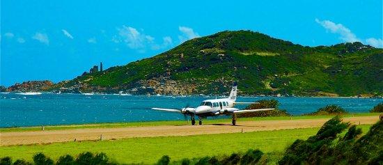 Beef Island, Tortola: Island Birds Caribbean Charters