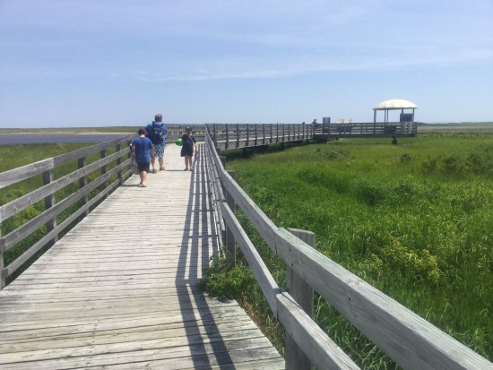 Saint-Louis-de-Kent, Canada: The boardwalk at Kellys beach.