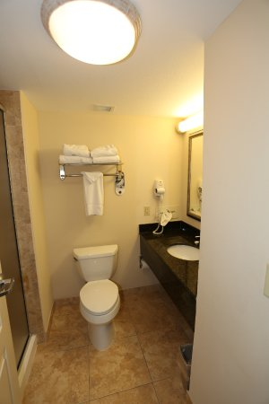 Holiday Inn Hotel & Conference Center: Small bathroom with stand up shower only.