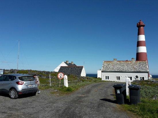 Gamvik Municipality, Norveç: Slettnes fyr panoramica con volpe