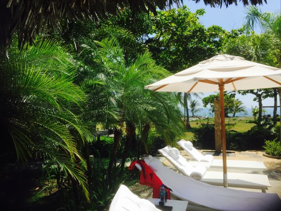 Golfito, كوستاريكا: Beautiful day by the pool
