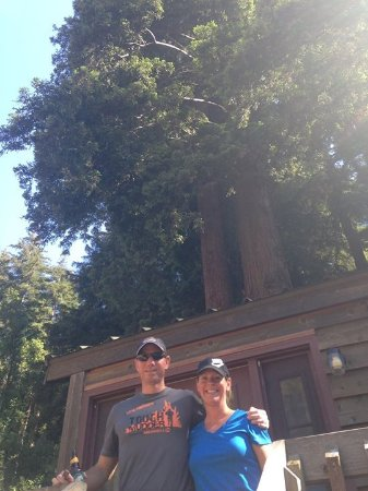Fernwood Resort: Cabin under the Redwoods