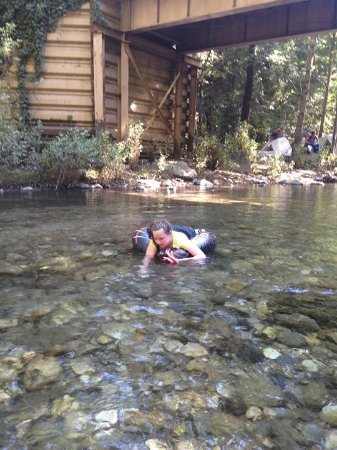 Fernwood Resort: Big Sur River