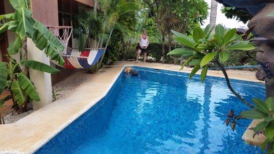 Casa Bambora: Very Clean beautiful turquoise pool