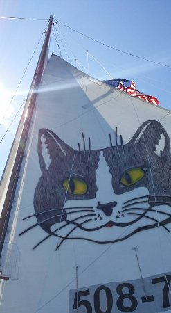 Catboat Rides: View upward from my Catboat seat