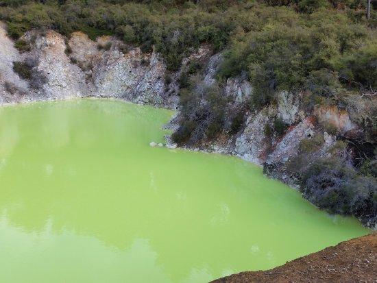 Wai-O-Tapu Thermal Wonderland: last pool at end