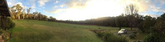 Valley Farm Vineyard: photo4.jpg