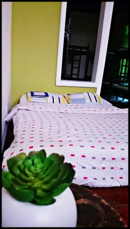 Hostel 1110: Dorms